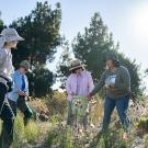 Image of UC Davis Arboretum and Public Garden staff and volunteers in the native grass meadow.